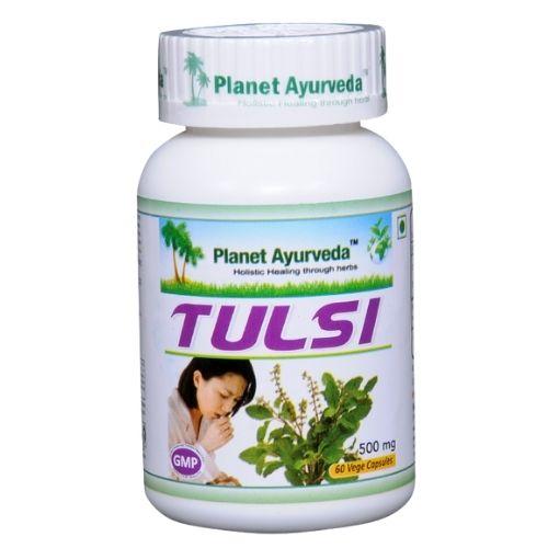 A planta tulsi é usada em alergias, gripes e constipações